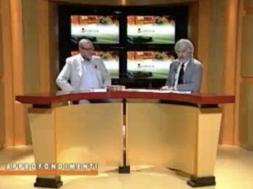 7gold-intervista-azzardo