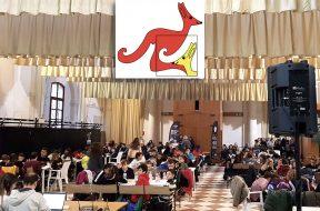 Kangourou Venezia gennaio 2020