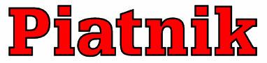 Piatnik Logo.jpg