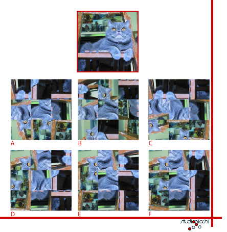 PuzzleIntruso_p.jpg